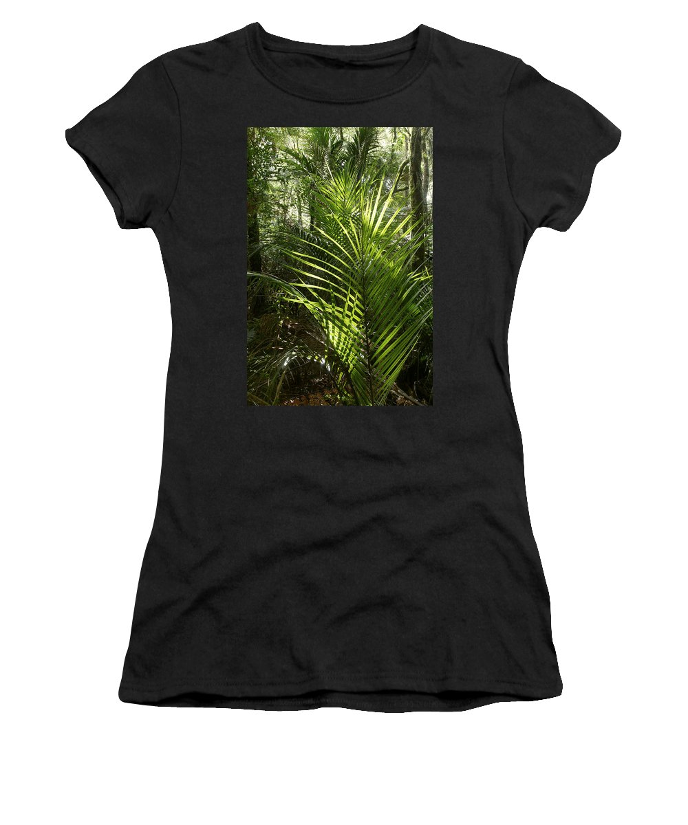 Rain Forest Women's T-Shirt featuring the photograph Jungle Ferns by Les Cunliffe