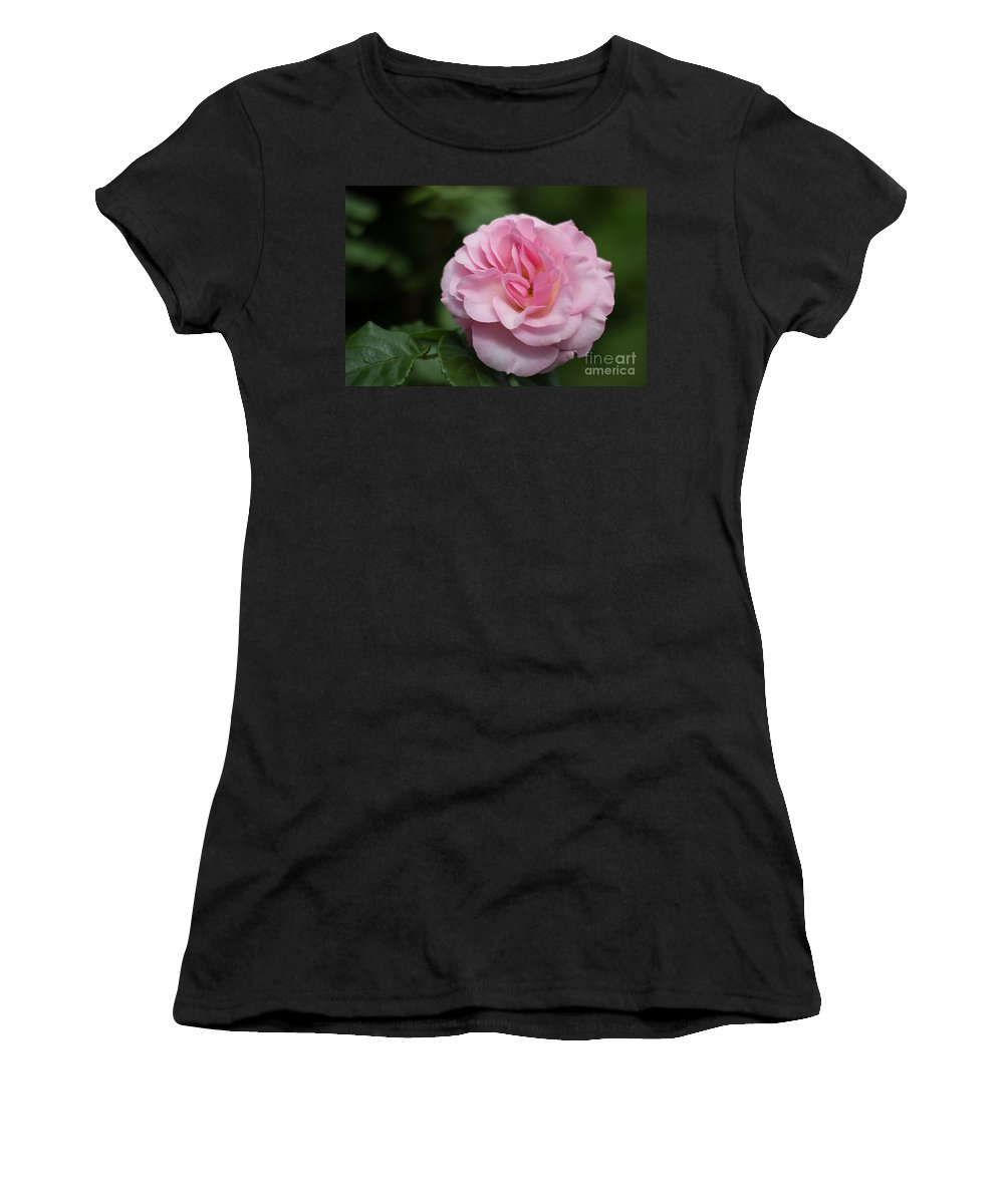 Flowers Women's T-Shirt featuring the photograph Pretty In Pink by Suzanne Luft