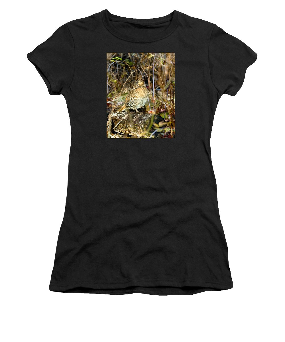 Ruffed Grouse Women's T-Shirt (Athletic Fit) featuring the photograph Ruffed Grouse On Drumming Log by Timothy Flanigan