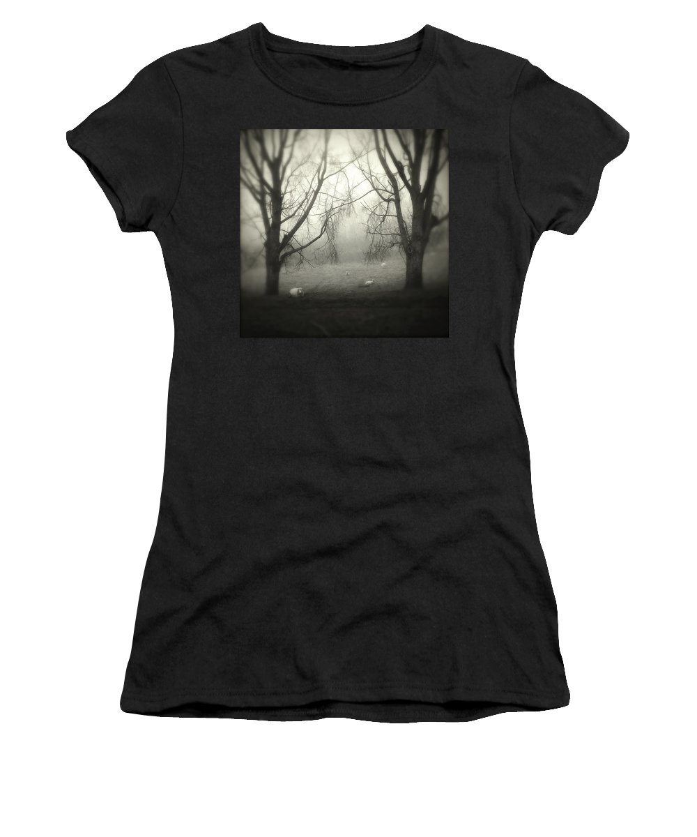 Sheep Women's T-Shirt (Athletic Fit) featuring the photograph Sheep by Les Cunliffe