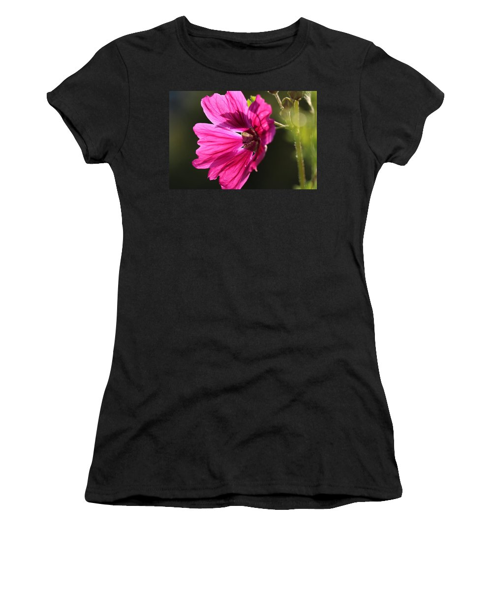 Nature Women's T-Shirt (Athletic Fit) featuring the photograph Summer Impressions by Heike Hultsch