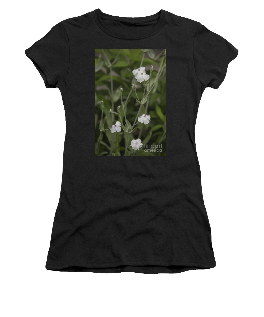 Rose Campion Women's T-Shirt featuring the photograph White Rose Campion by Teresa Mucha