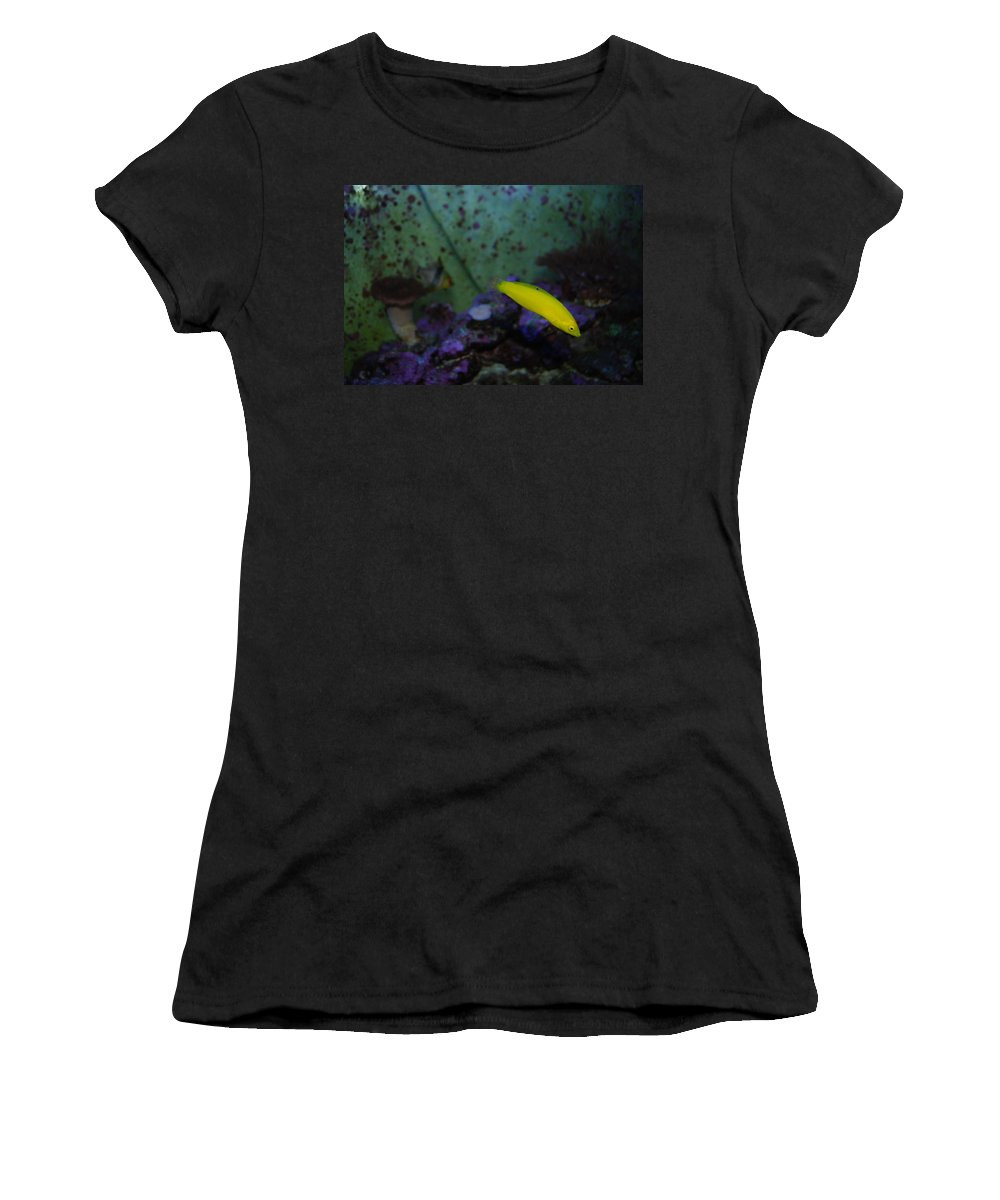 Taken Through Side Of Aquarium Women's T-Shirt featuring the photograph Tropical Fish And Coral by Robert Floyd