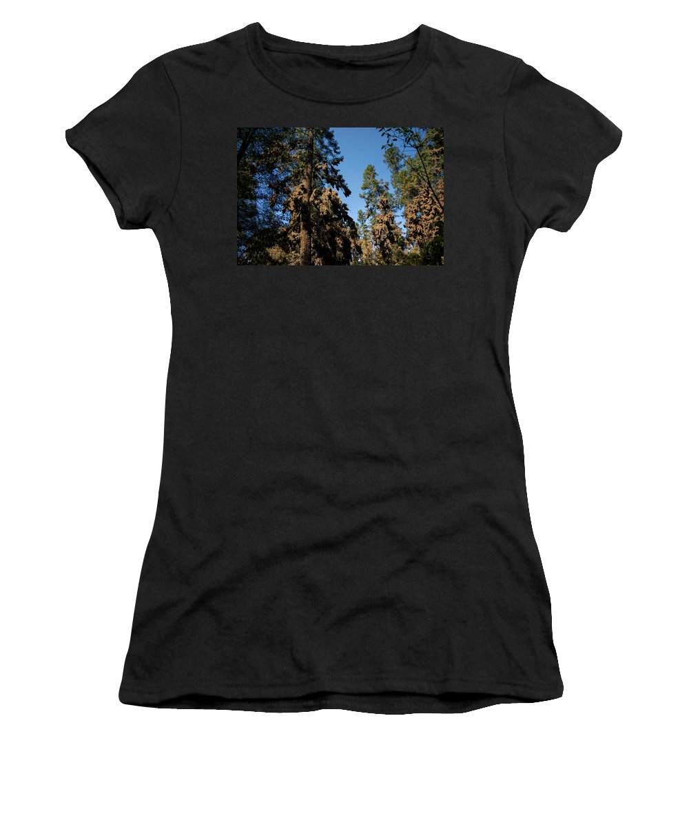 Animals Women's T-Shirt (Athletic Fit) featuring the digital art Monarch Butterflies by Carol Ailles