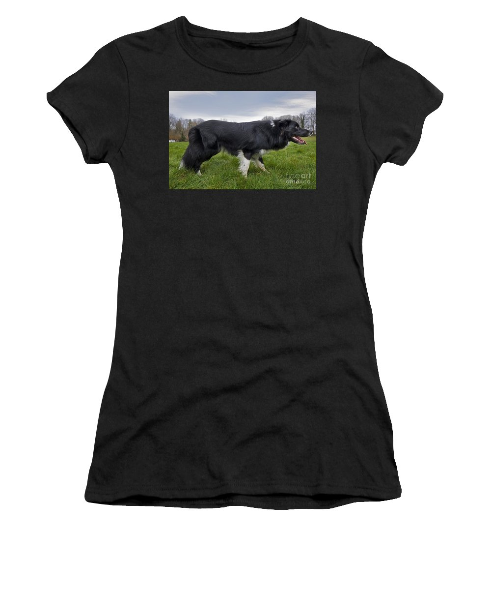 Mammal Women's T-Shirt featuring the photograph 110506p164 by Arterra Picture Library