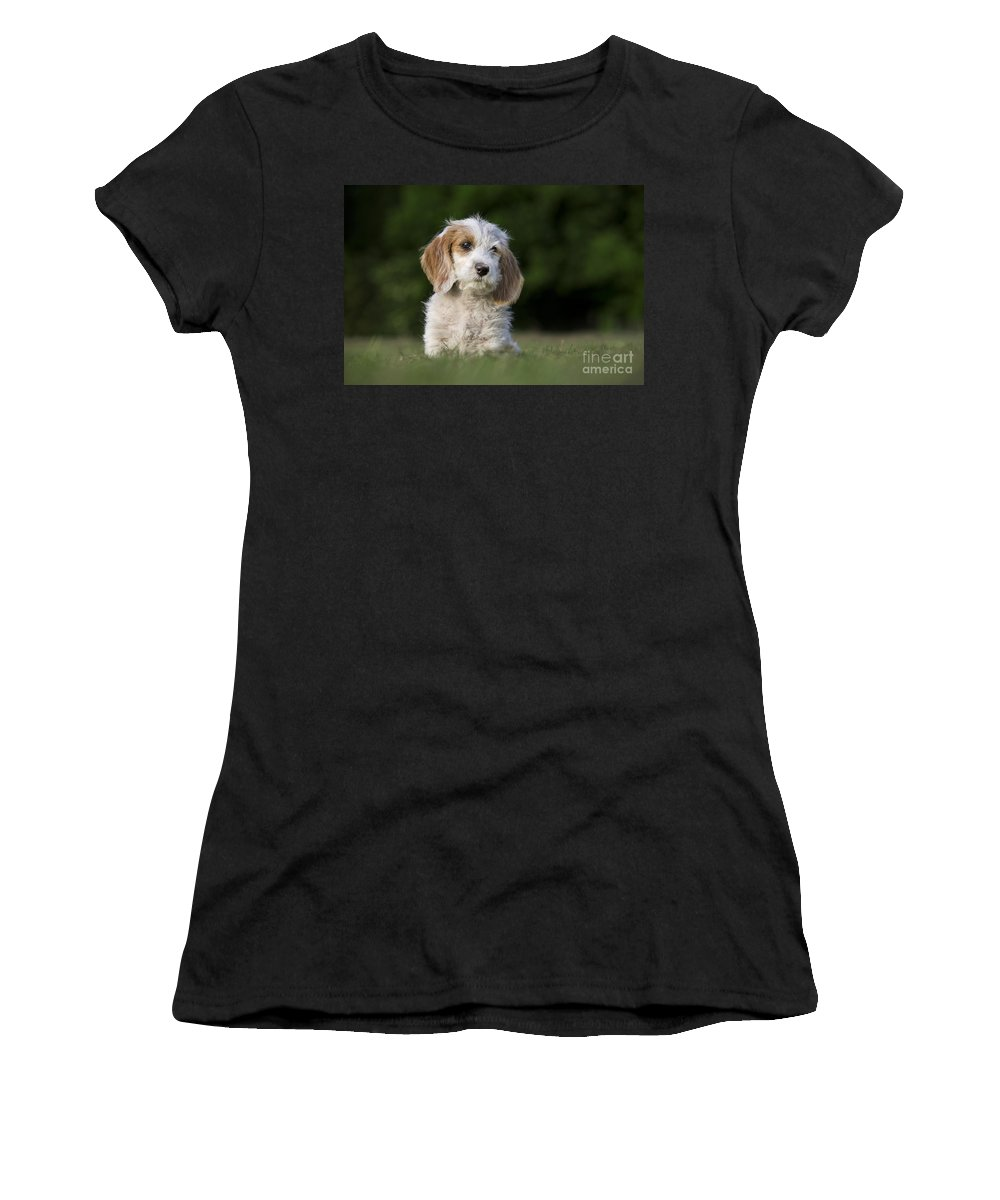 Mammal Women's T-Shirt featuring the photograph 110506p204 by Arterra Picture Library