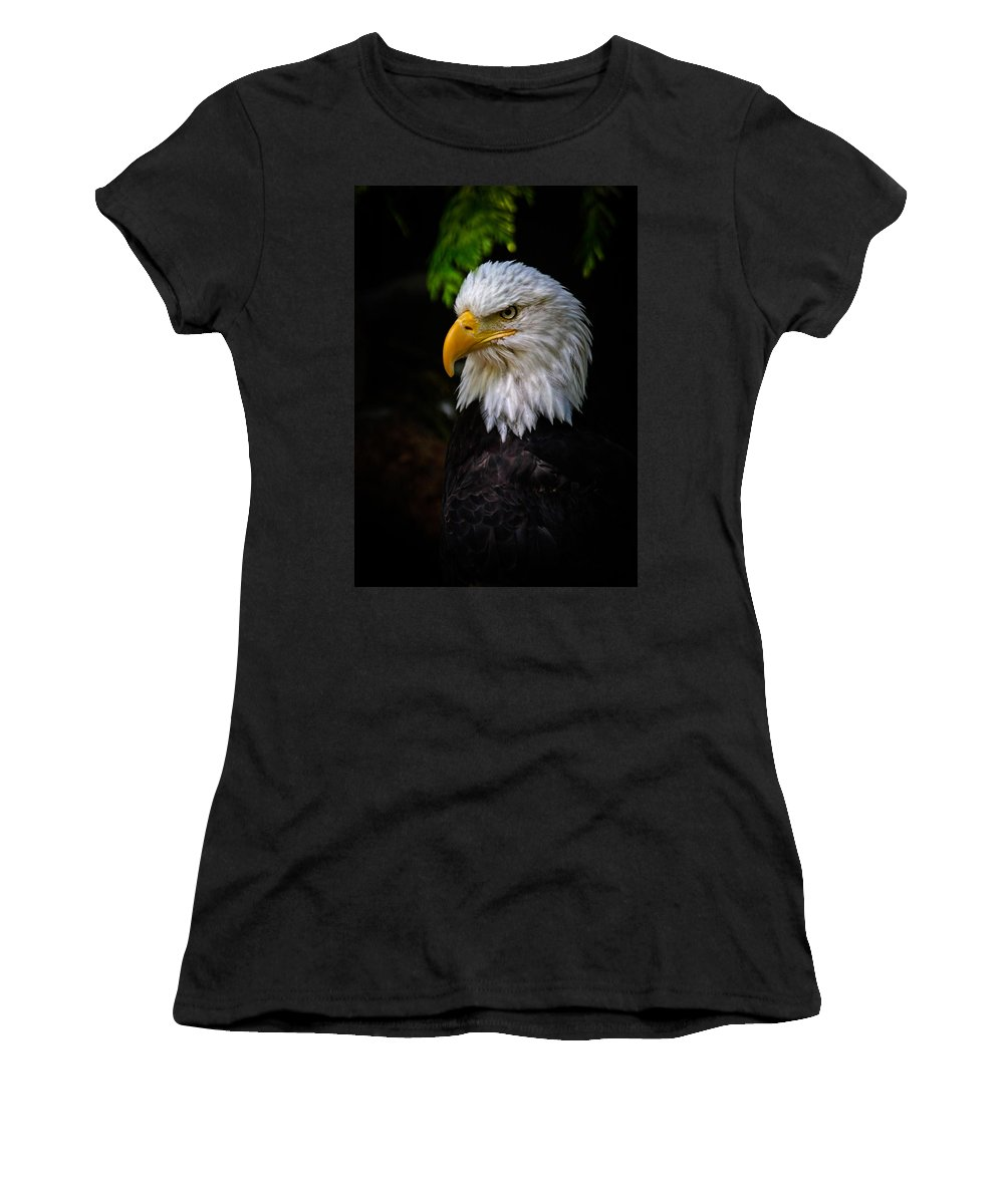 Eagle Women's T-Shirt featuring the photograph American Bald Eagle by Athena Mckinzie
