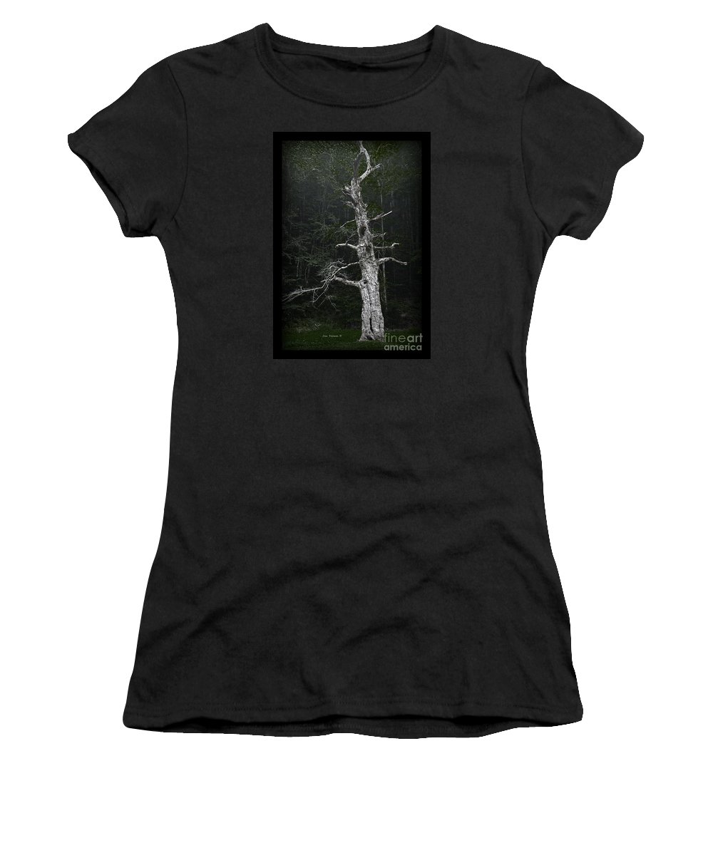 Ancient Women's T-Shirt featuring the photograph Anthropomorphic Tree by John Stephens