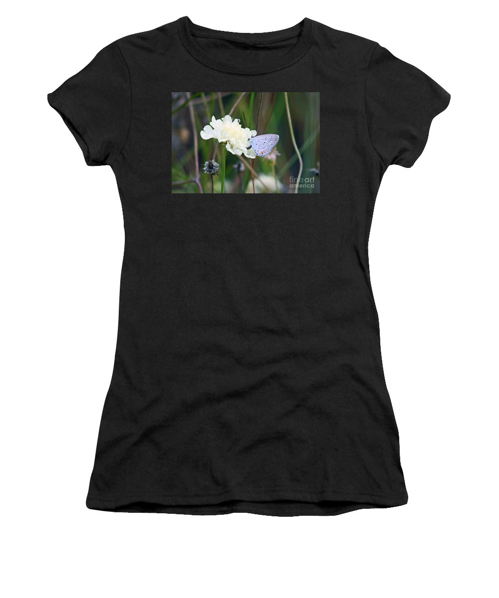 Eastern Tailed Blue Women's T-Shirt (Athletic Fit) featuring the photograph Eastern Tailed Blue Butterfly On Pincushion Flower by Karen Adams