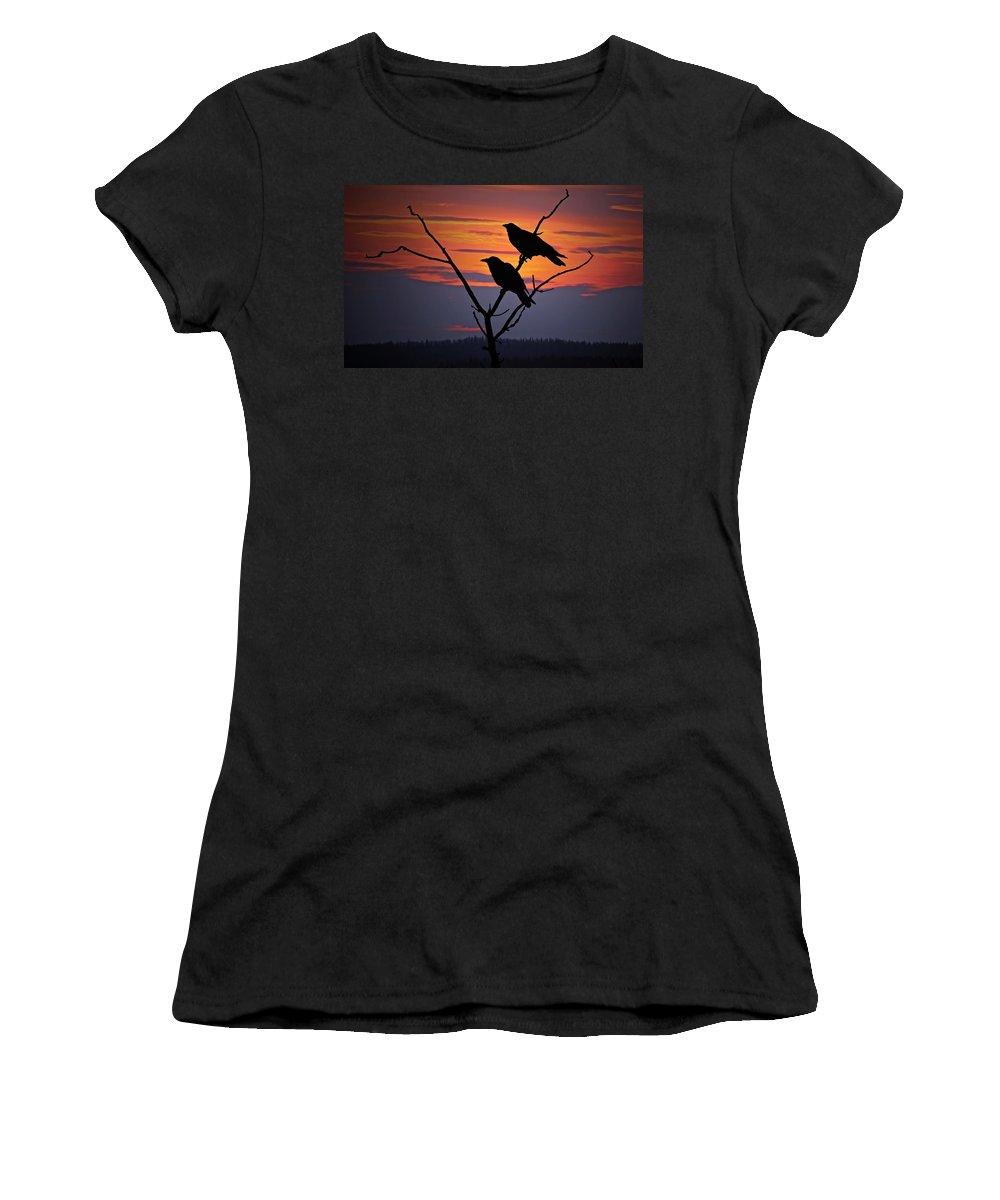 Raven Women's T-Shirt (Athletic Fit) featuring the photograph 2 Ravens by Ron Day
