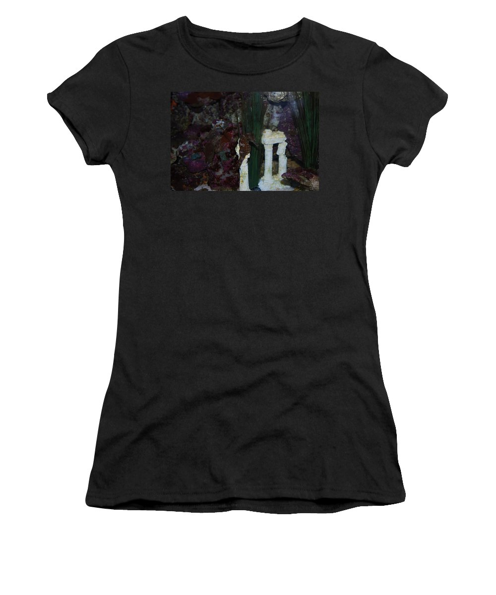 Taken Through Side Of Aquarium Women's T-Shirt (Athletic Fit) featuring the photograph Seahorse by Robert Floyd
