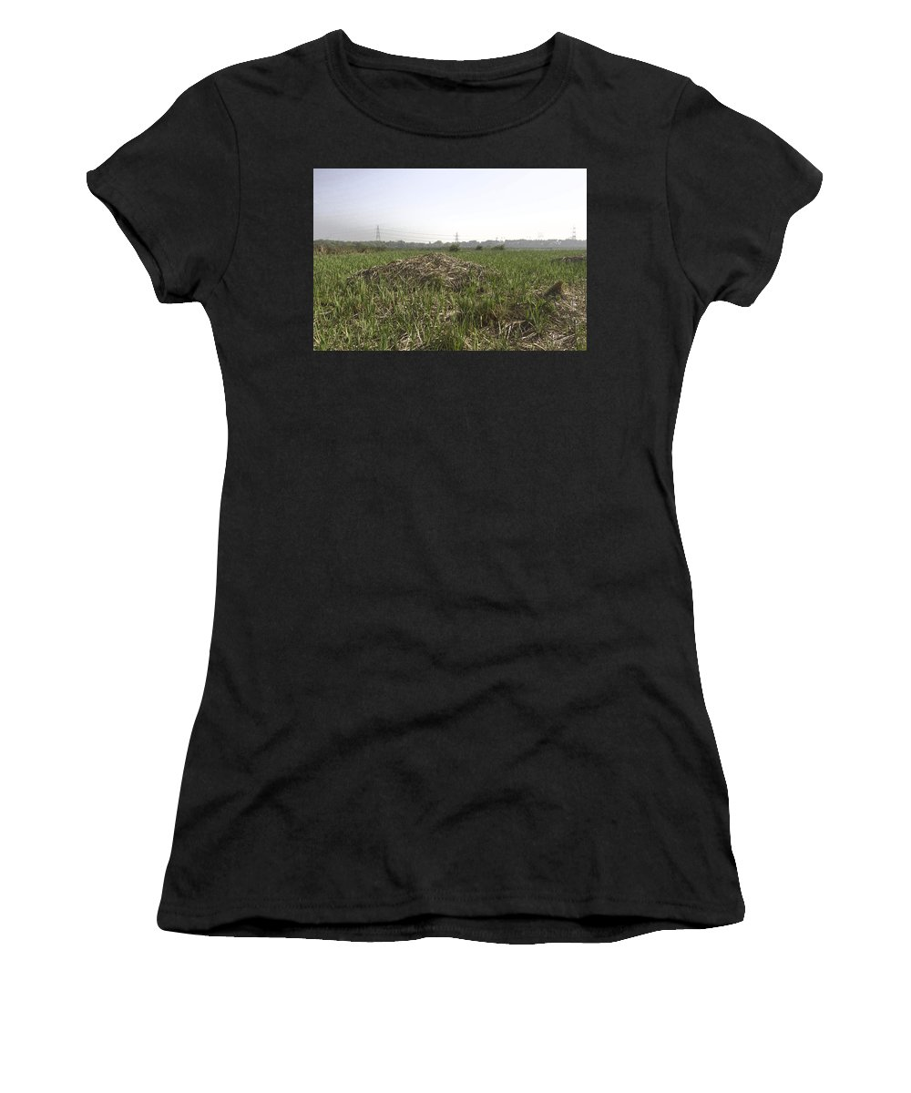 Bird Sanctuary Women's T-Shirt (Athletic Fit) featuring the digital art Cut And Dried Grass Along With Growing Grass by Ashish Agarwal