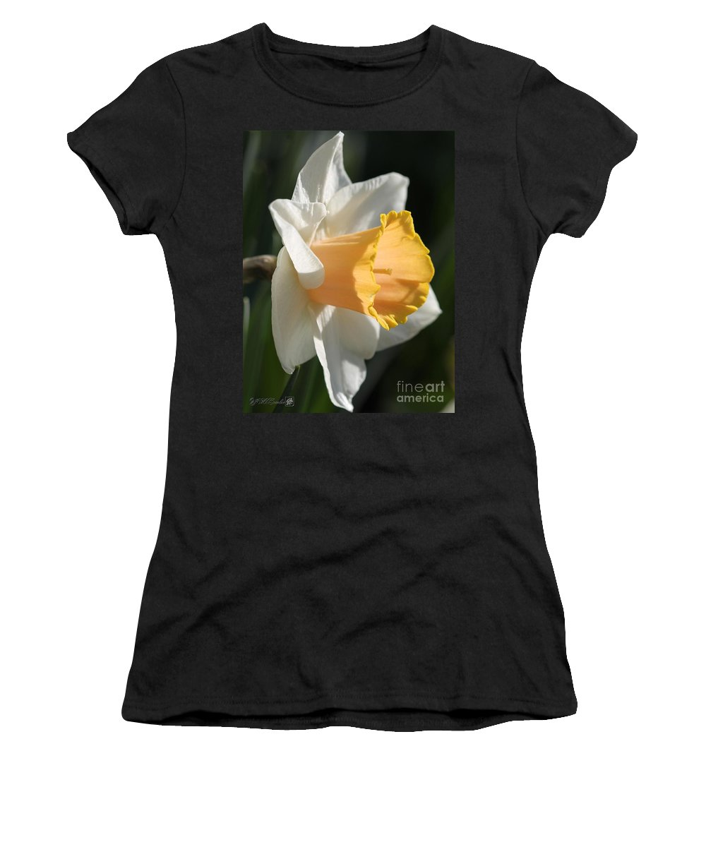 Mccombie Women's T-Shirt featuring the photograph Large-cupped Daffodil Named Mrs. R.o. Backhouse by J McCombie