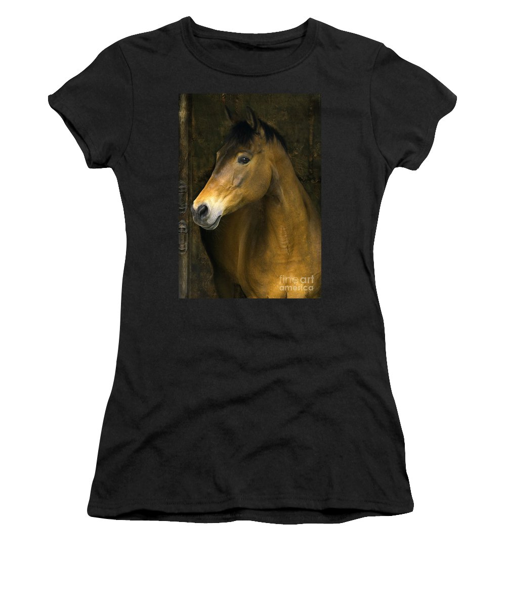 Horse Women's T-Shirt (Athletic Fit) featuring the photograph In The Stable by Angel Ciesniarska