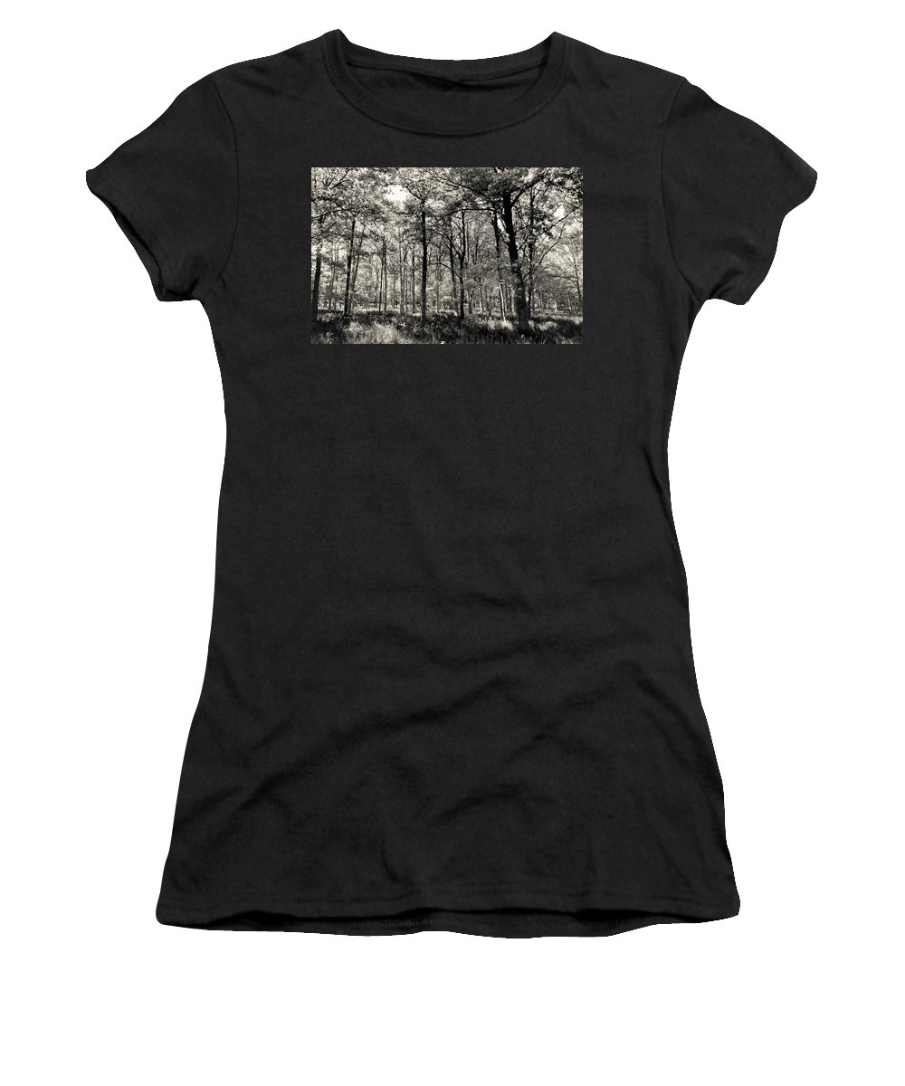 Tree Women's T-Shirt featuring the photograph A English Forest by David Pyatt