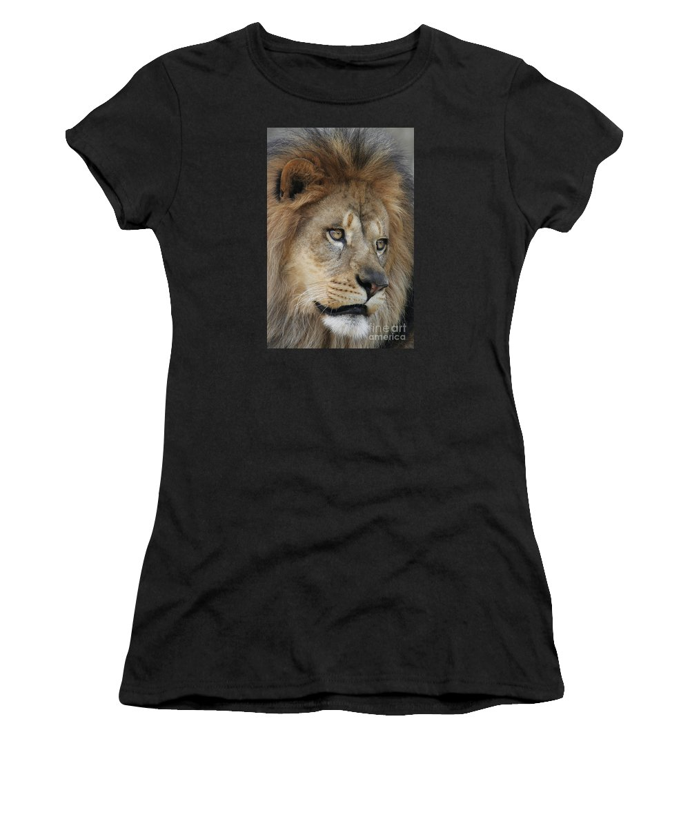 Lion Women's T-Shirt (Athletic Fit) featuring the photograph African Lion #5 by Judy Whitton