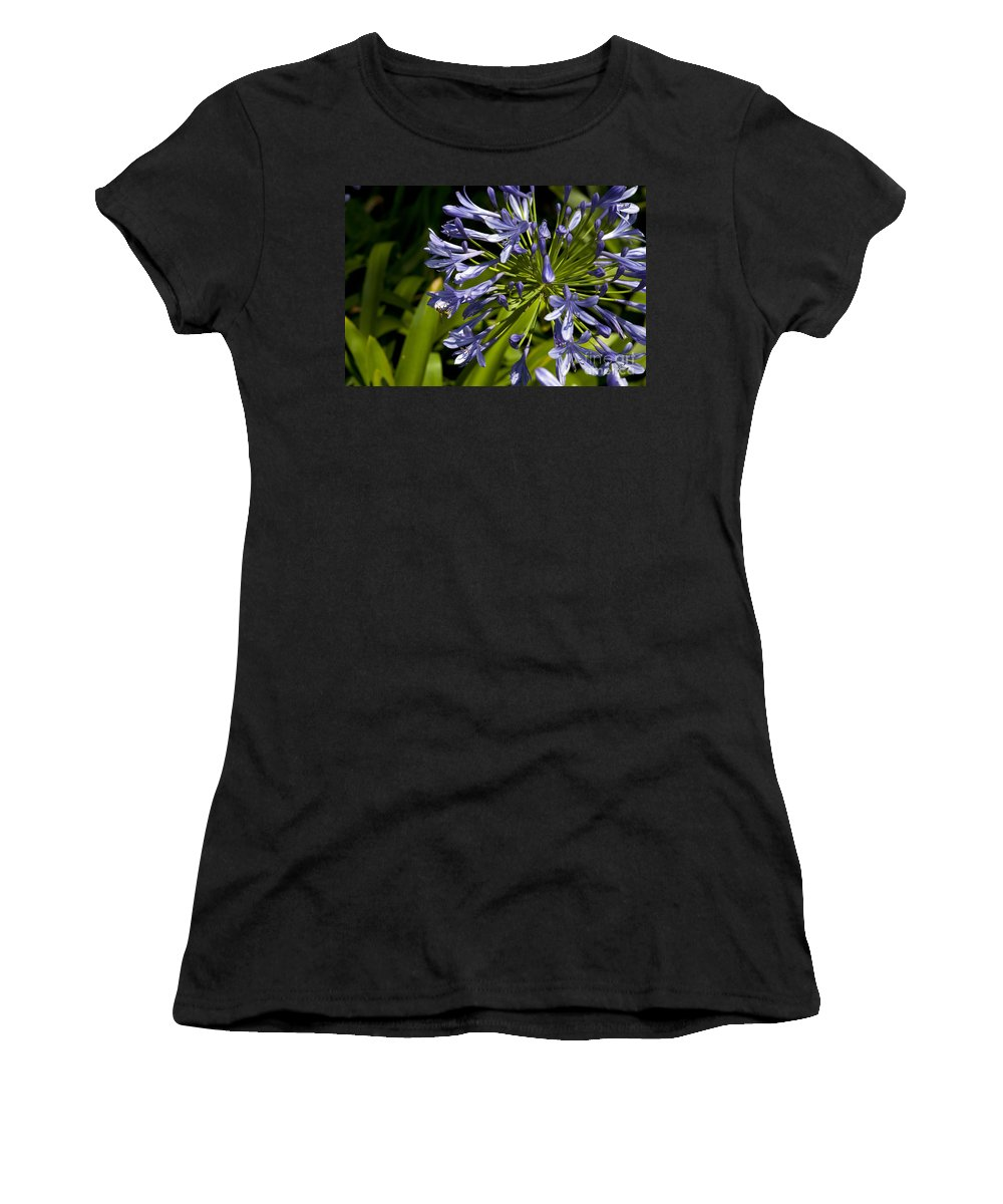 Agapanthus Women's T-Shirt featuring the photograph Agapanthus Flower And Bee by Jason O Watson