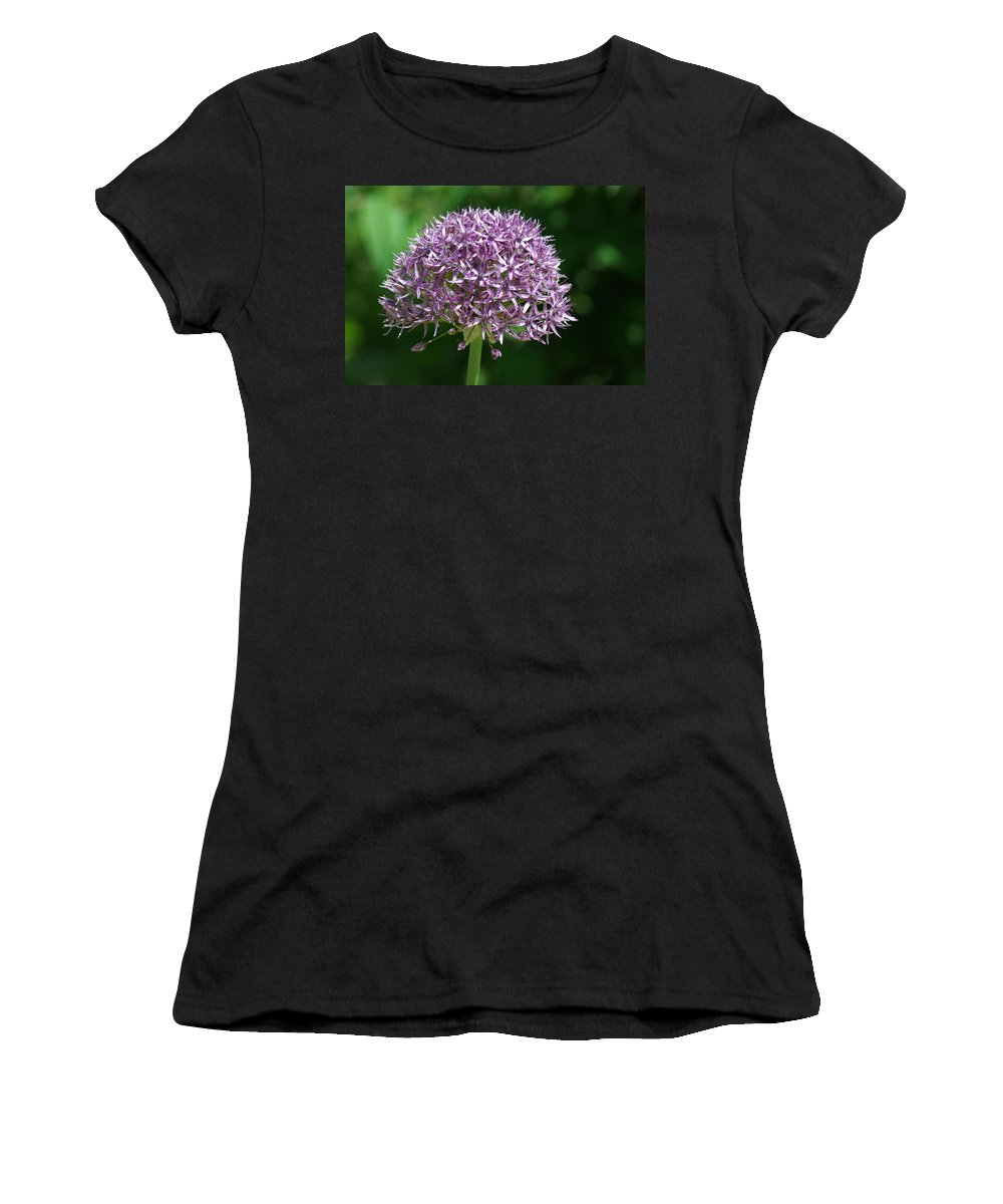 Allium Women's T-Shirt featuring the photograph Allium by Chris Day
