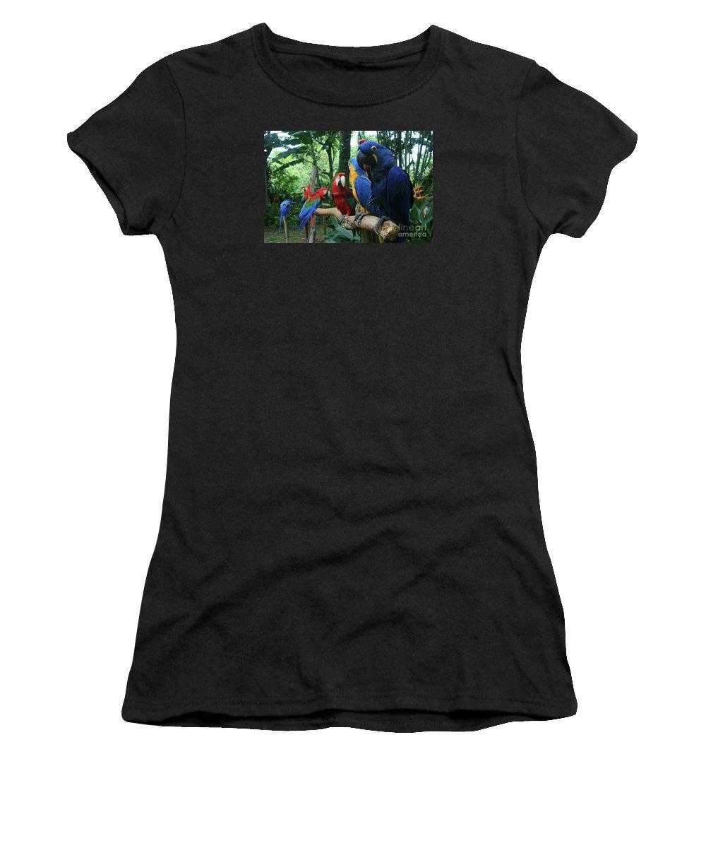 Macaw Women's T-Shirt (Athletic Fit) featuring the photograph Aloha Kaua Aloha Mai No Aloha Aku Beautiful Macaw by Sharon Mau