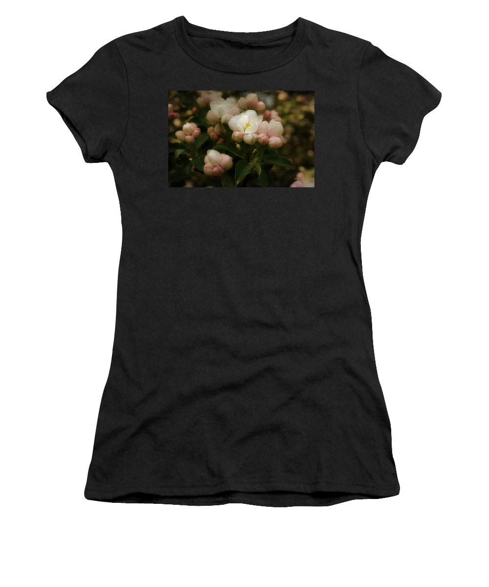 Apple Women's T-Shirt (Athletic Fit) featuring the photograph Apple Blossom Time by Mary Machare