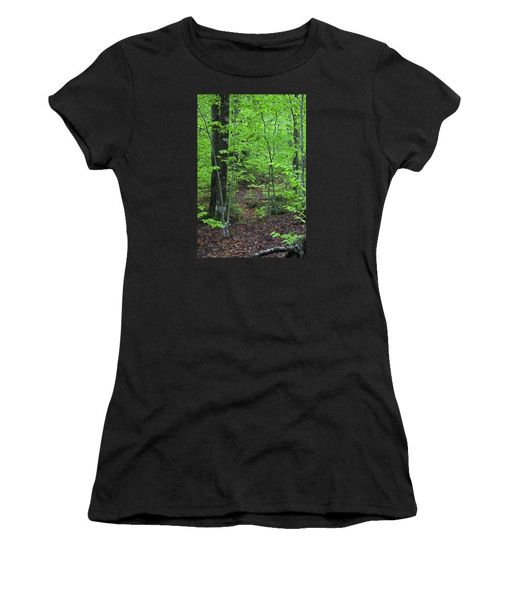 Spring Women's T-Shirt (Athletic Fit) featuring the photograph Approaching Sullivan by John Stephens