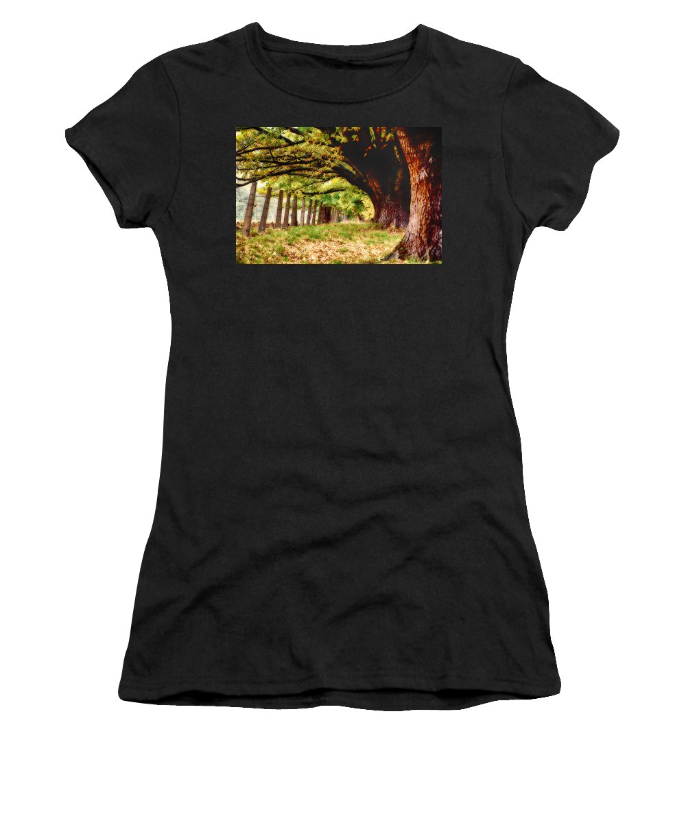 Autumn Shelter Women's T-Shirt (Athletic Fit) featuring the photograph Autumn Shelter by Douglas Barnard