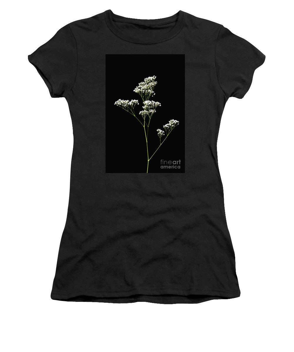 Flower Women's T-Shirt (Athletic Fit) featuring the photograph Baby's Breath-1 by Diane Macdonald