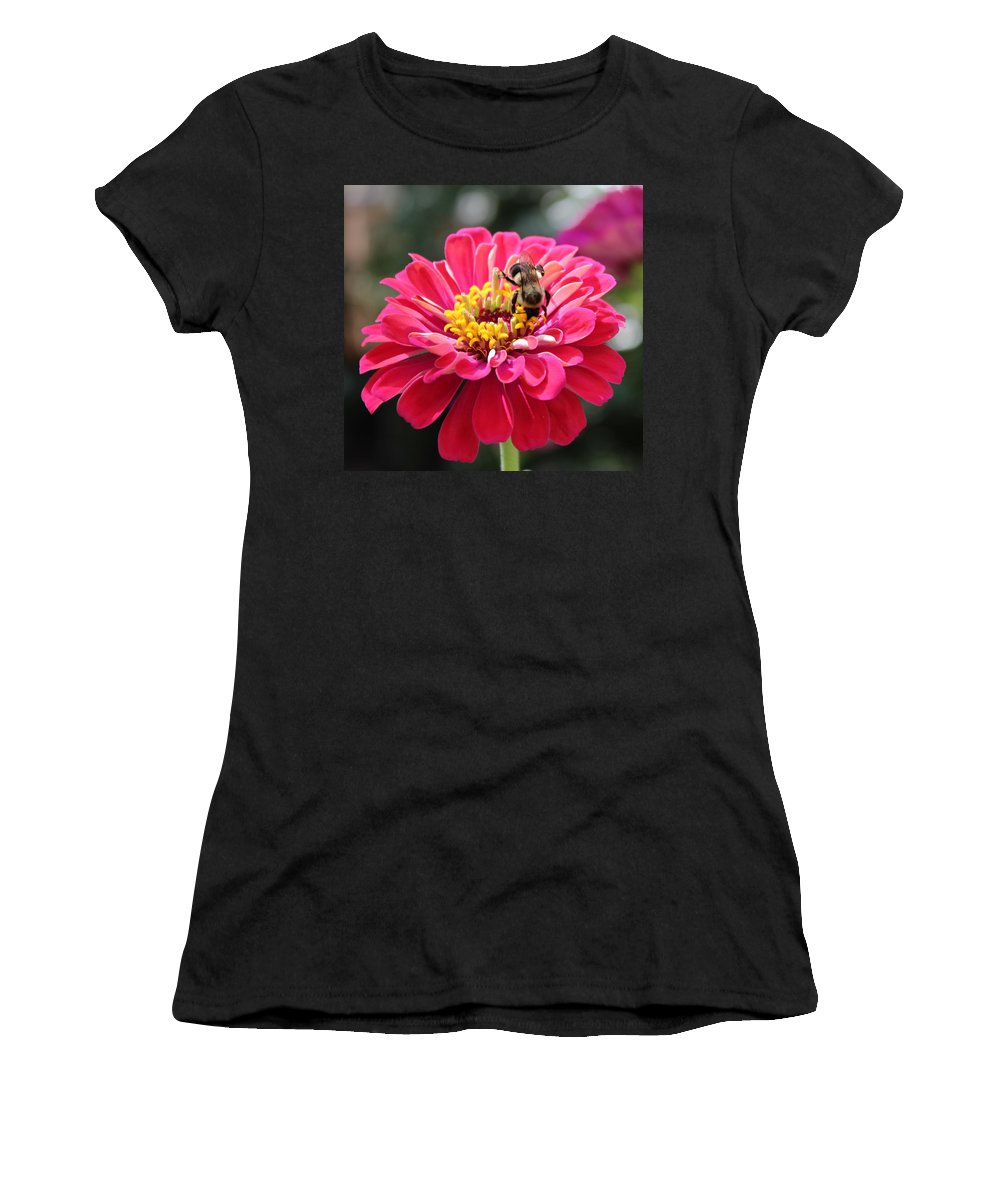Zinnia Women's T-Shirt (Athletic Fit) featuring the photograph Bee On Pink Flower by Cynthia Guinn