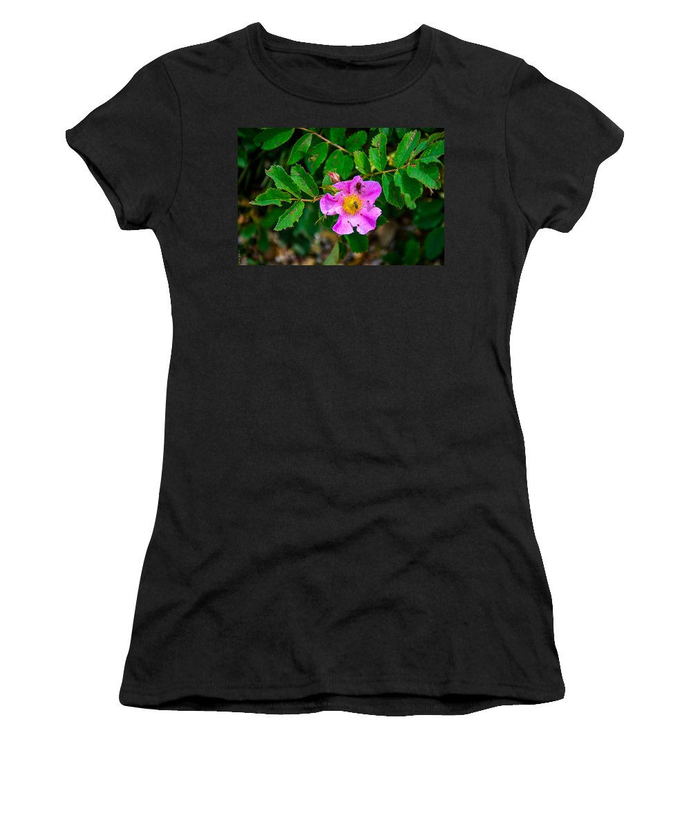 South Dakota Women's T-Shirt (Athletic Fit) featuring the photograph Beetle And Fly On Wild Rose by M Dale