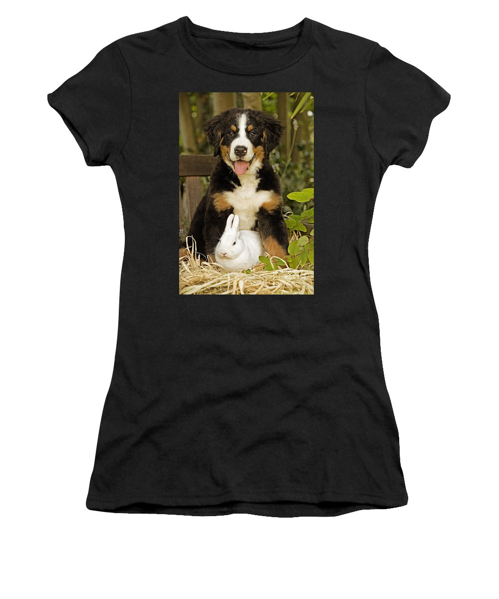 Bernese Mountain Dog Women's T-Shirt (Athletic Fit) featuring the photograph Bernese Mountain Puppy And Rabbit by Jean-Michel Labat