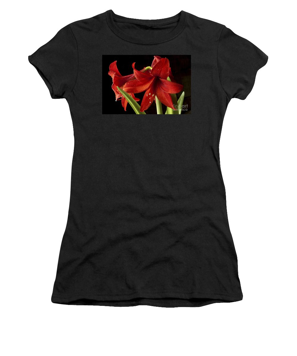 Amaryllis Women's T-Shirt featuring the photograph Big Red by Paul W Faust - Impressions of Light