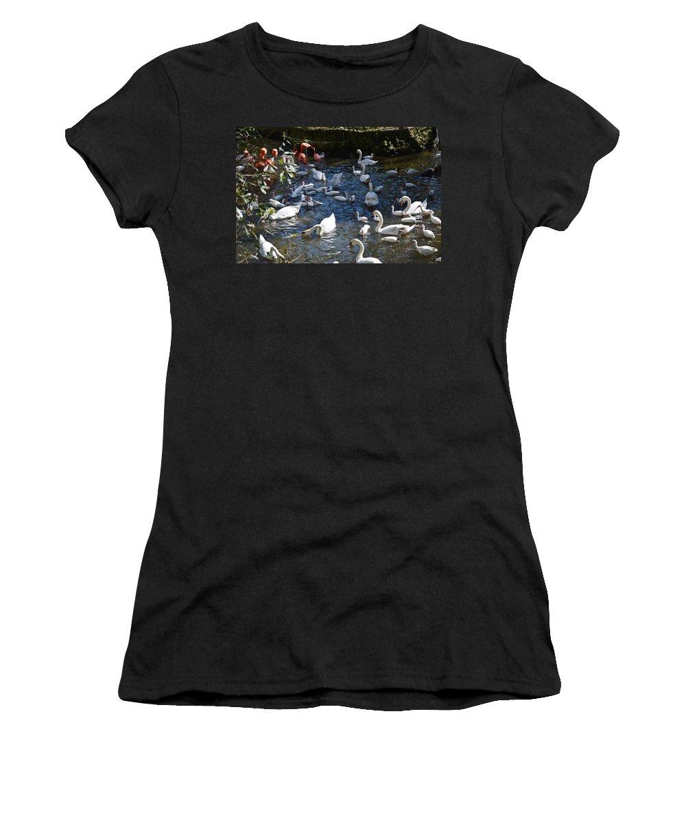 Florida Women's T-Shirt (Athletic Fit) featuring the photograph Bird Bash by Linda Kerkau