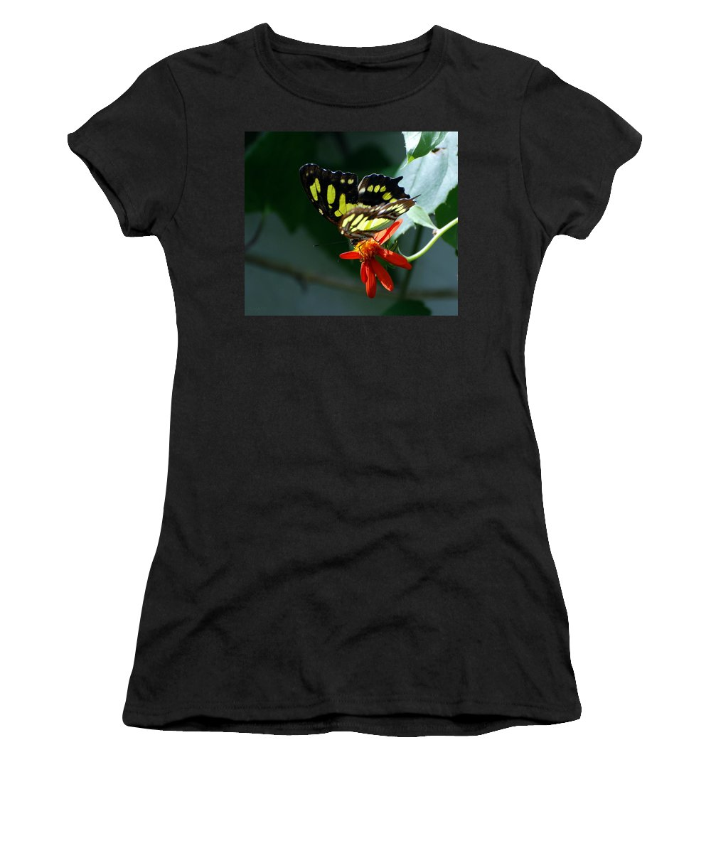 Lepidopterology Women's T-Shirt featuring the photograph Blooms And Butterfly7c by Rob Hans