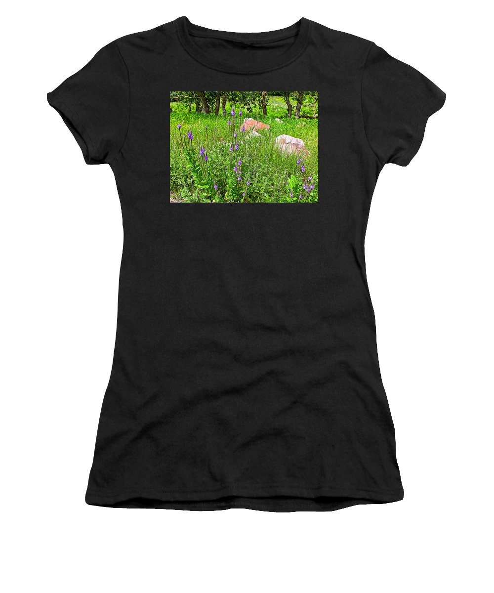 Blue Vervain And Rocks In Pipestone National Monument Women's T-Shirt featuring the photograph Blue Vervain And Rocks In Pipestone National Monument-minnesota by Ruth Hager