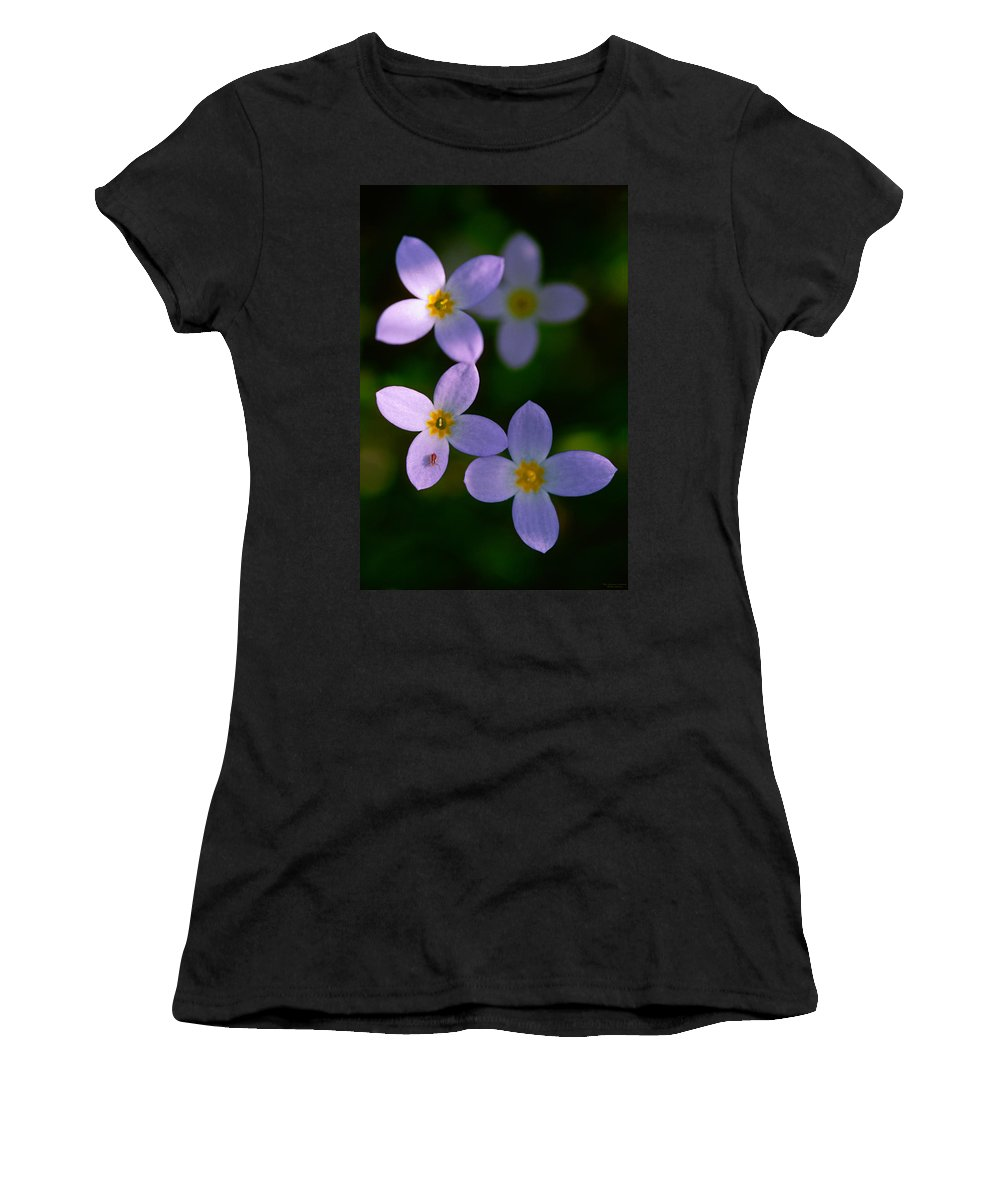 Bluet Women's T-Shirt (Athletic Fit) featuring the photograph Bluets With Aphid by Marty Saccone