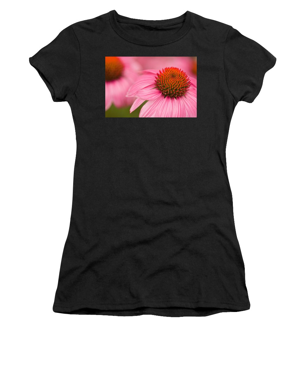 Coneflowers Women's T-Shirt featuring the photograph Boldly Summer by Lindley Johnson