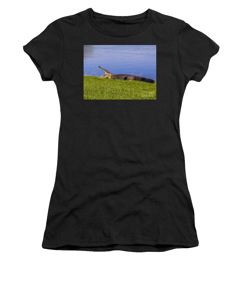 American Alligator Women's T-Shirt featuring the photograph Bored And Hungry by Zina Stromberg