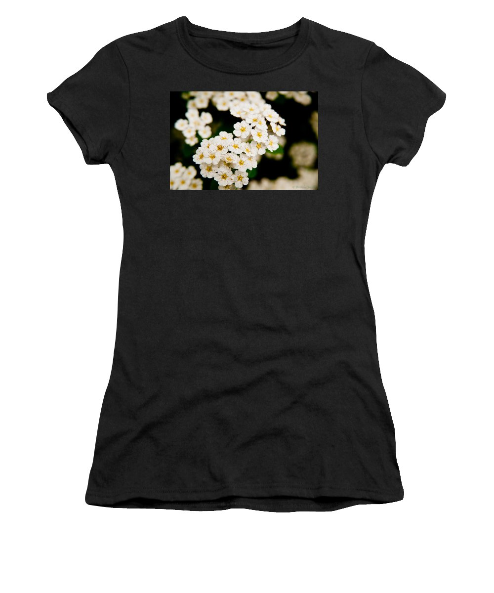 Bloom Women's T-Shirt featuring the photograph Bridal Veil Spirea by Brenda Jacobs