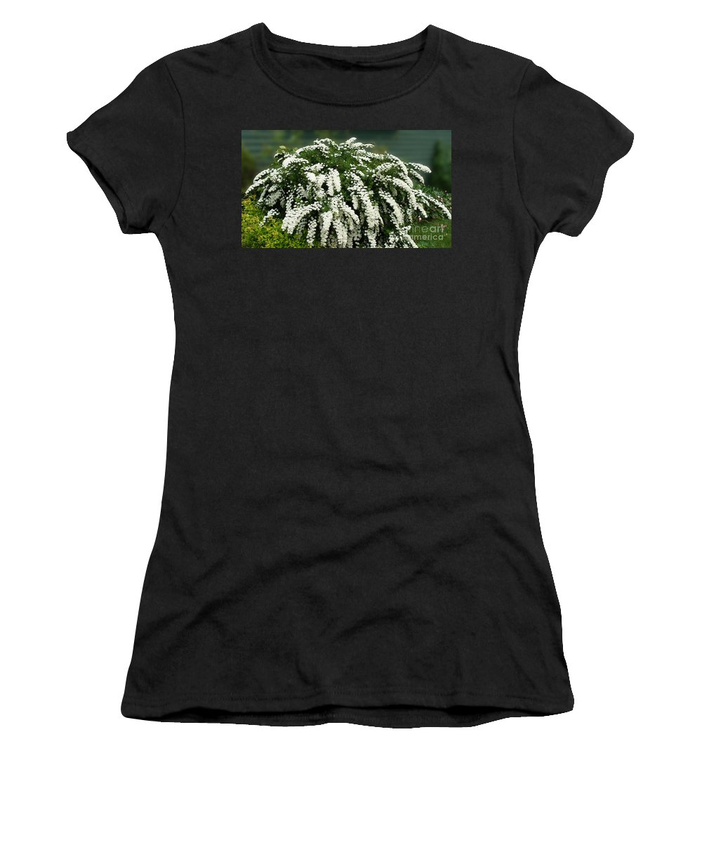 Bridal Wreath Flowers Women's T-Shirt featuring the photograph Bridal Wreath Spirea - White Flowers - Florist by Barbara Griffin