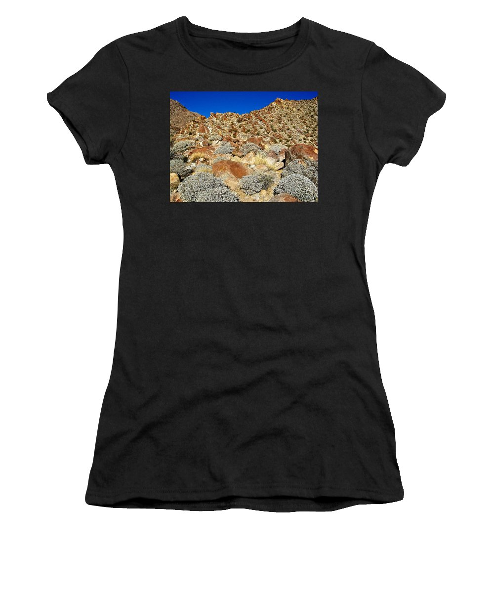 Brittlebush Leaves And Santa Rosa Mountains From Borrego Palm Canyon Trail In Anza-borrego Desert State Park Women's T-Shirt (Athletic Fit) featuring the photograph Brittlebush Leaves And Santa Rosa Mountains From Borrego Palm Canyon In Anza-borrego Desert Sp-ca by Ruth Hager
