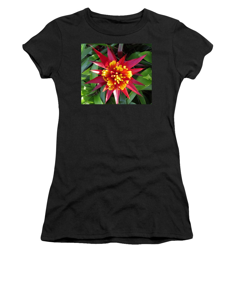 Bromelaid Women's T-Shirt featuring the photograph Bromelaid by Zina Stromberg