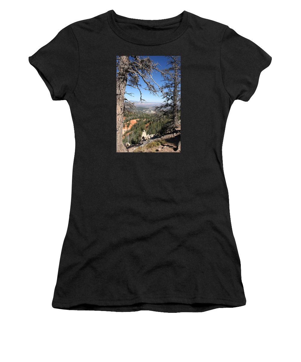 Trees Women's T-Shirt (Athletic Fit) featuring the photograph Bryce Canyon Overlook With Dead Trees by Christiane Schulze Art And Photography