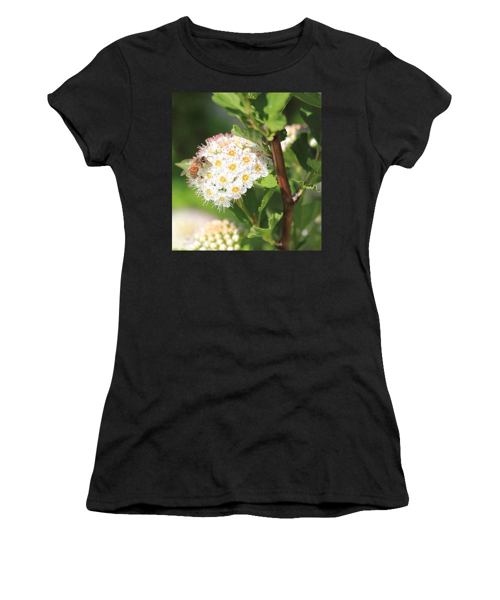 Bee Women's T-Shirt (Athletic Fit) featuring the photograph Busy As A Bee by Shane Bechler