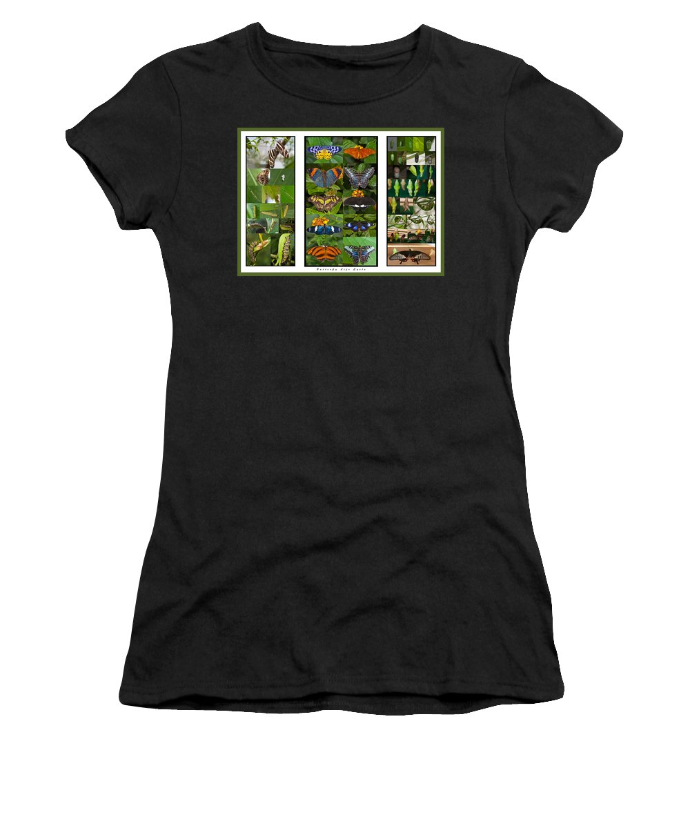 Butterflies Women's T-Shirt (Athletic Fit) featuring the photograph Butterfly Cycle by Maj Seda