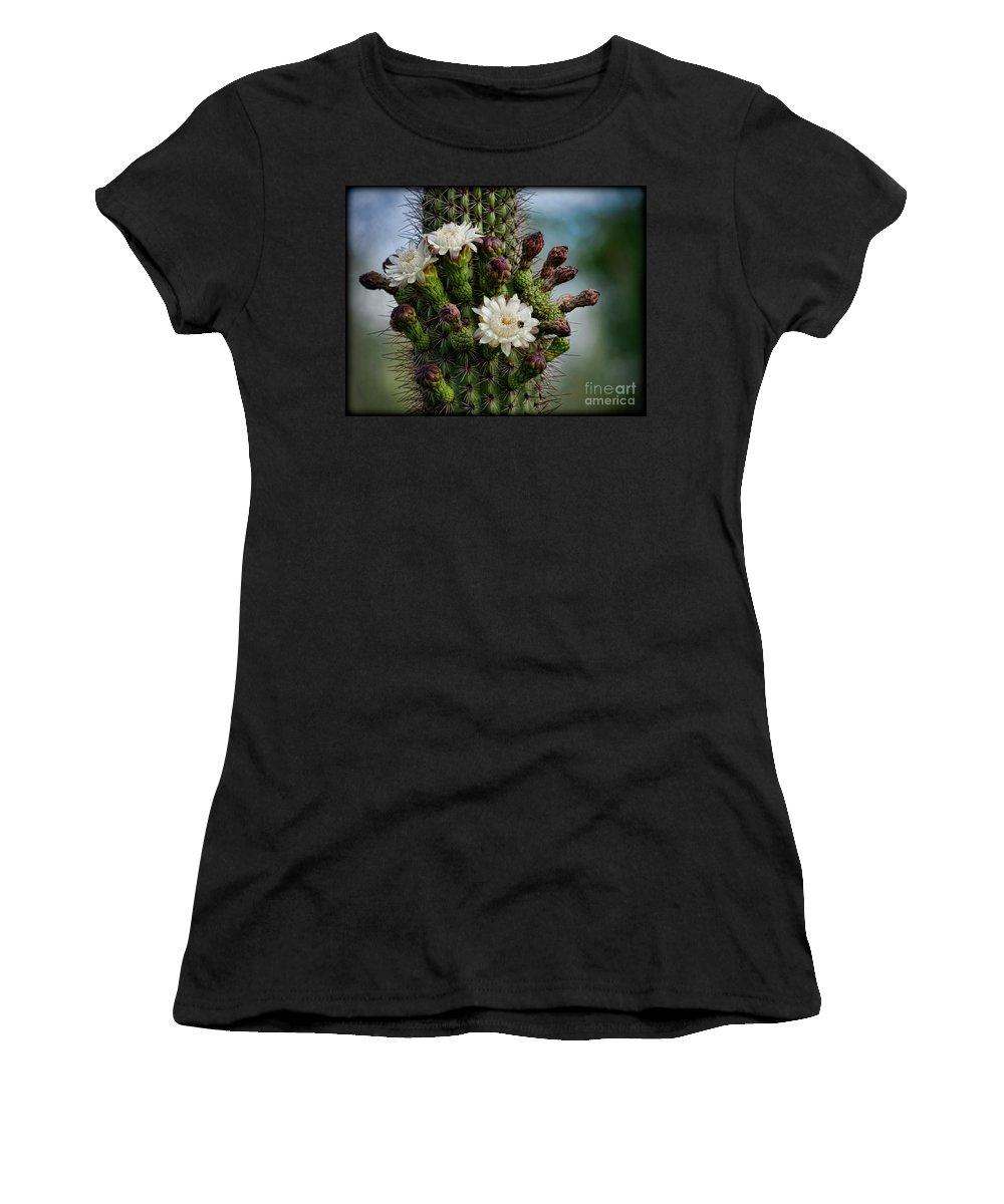Organ Pipe Cactus Flowers Women's T-Shirt featuring the photograph Cacti Bouquet by Saija Lehtonen