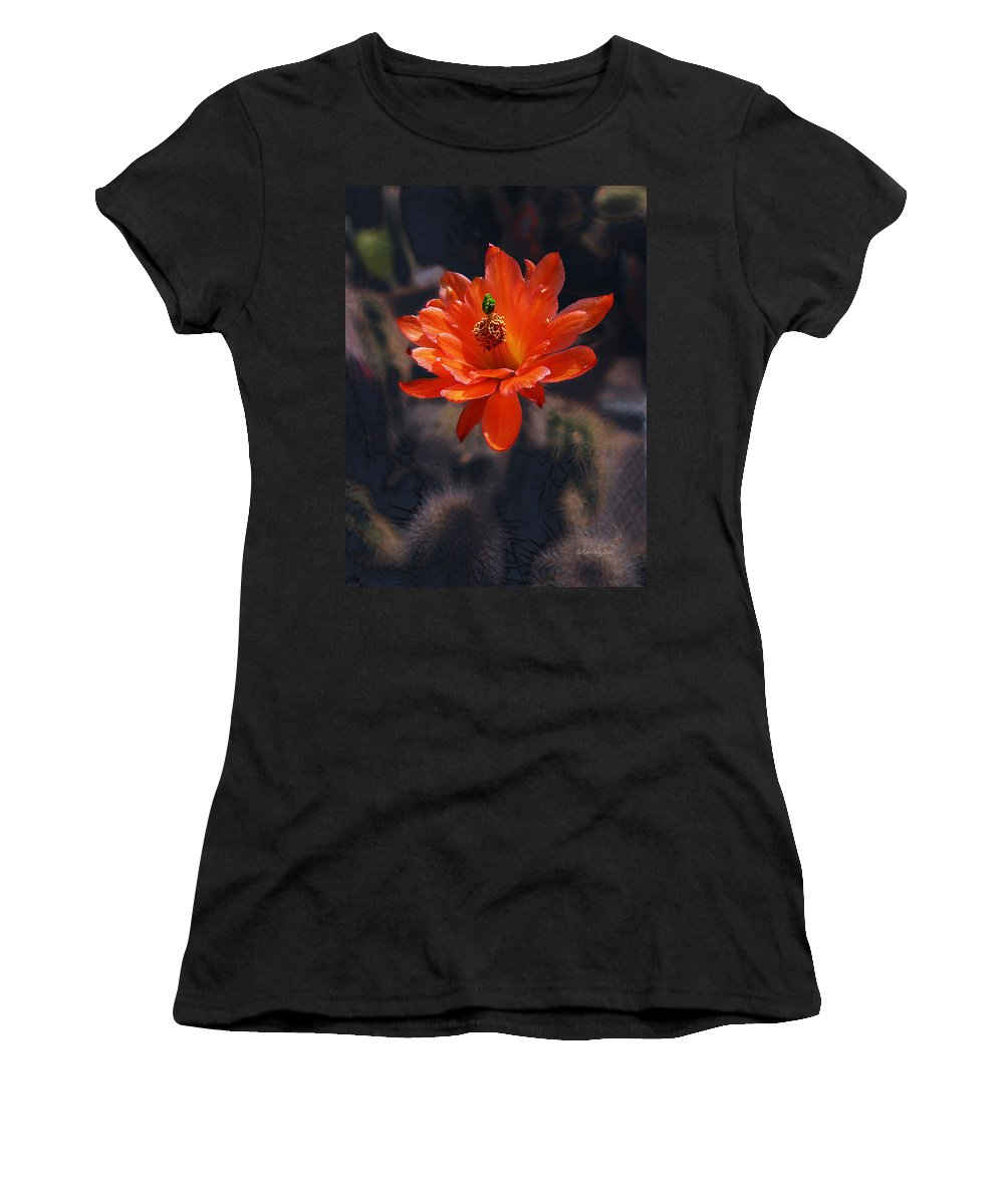 Echinocereus Women's T-Shirt (Athletic Fit) featuring the photograph Cactus Blossom 1 by Xueling Zou