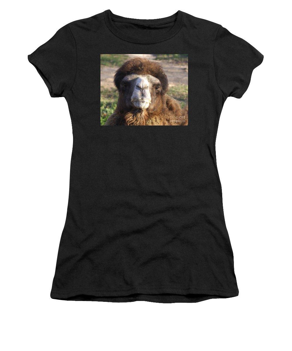 Camel Women's T-Shirt featuring the photograph Camel Face by Robert Edgar