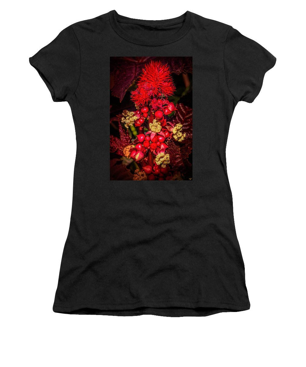 Castor Oil Women's T-Shirt featuring the photograph Caster Oil Plant by Chris Lord