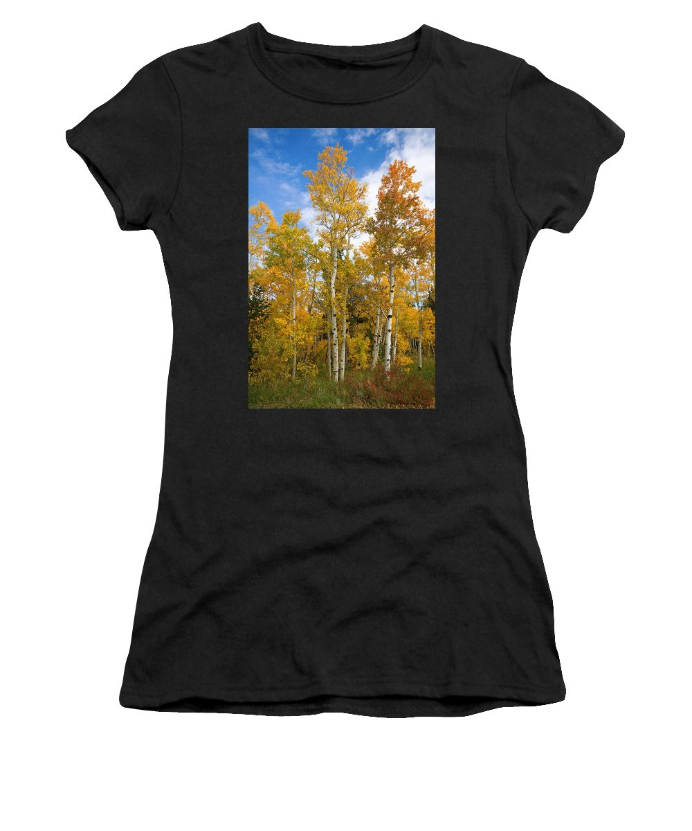 Colorful Women's T-Shirt (Athletic Fit) featuring the photograph Colorado Autumn Aspens by James BO Insogna