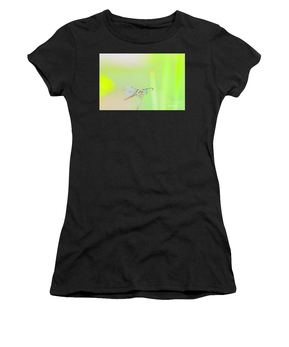 Insect Women's T-Shirt (Athletic Fit) featuring the photograph Colorful Dragonfly by Donna Brown